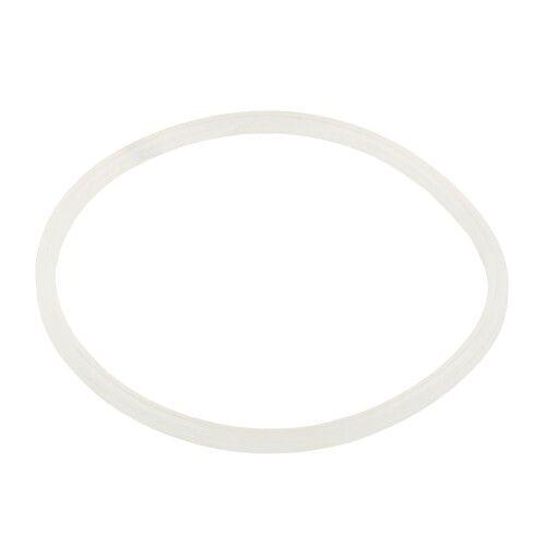 Уплотнительное кольцо хлоратора SSC Emaux
