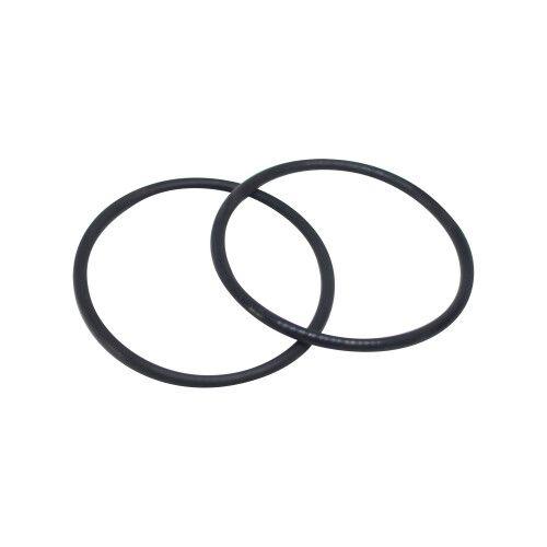Уплотнительное кольцо крана фильтра Side PWL (SX200Z4PAK2) Hayward