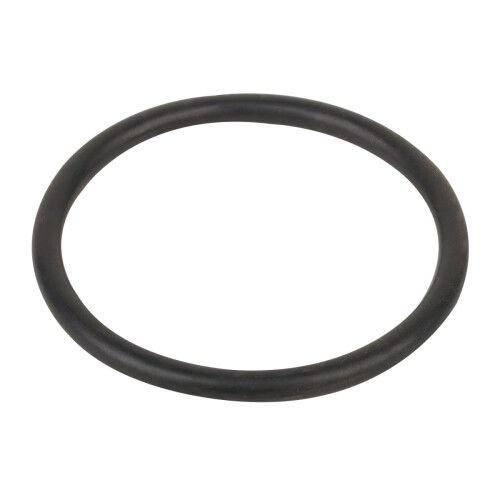 Уплотнительное кольцо соединительной муфты насоса SMP Aquaviva